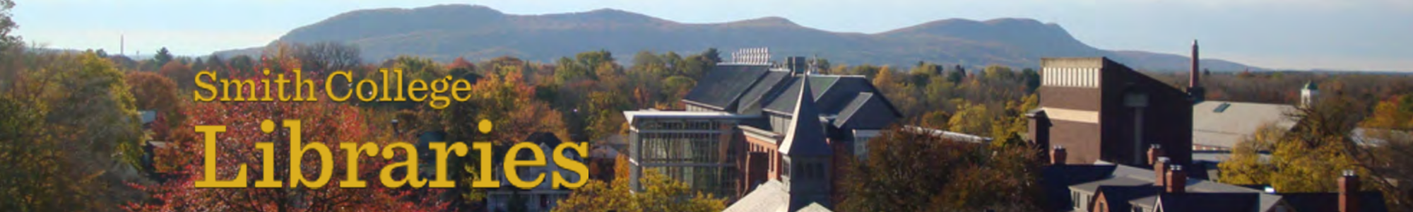 skyline view from Neilson Library at Smith college