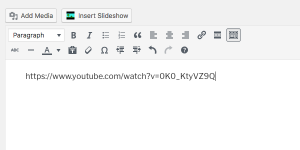 image of youtube url in wordpress editing box